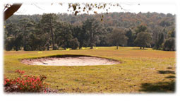 Golf course in Citrus Springs.